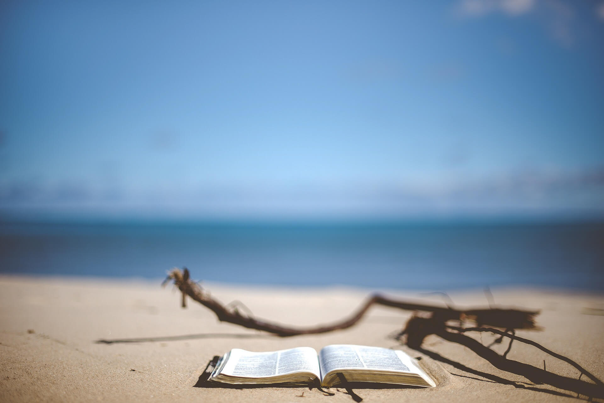 Buchempfehlungen mit Buch am Strand