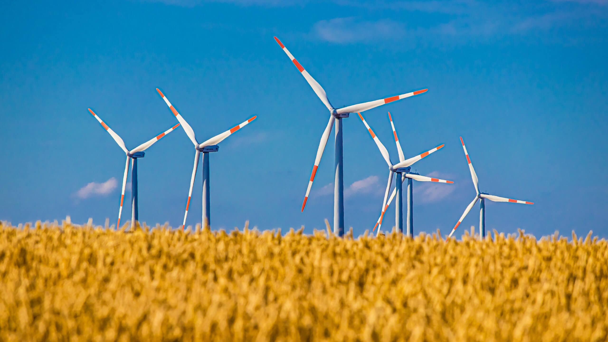 Erneuerbare Energien wie z. B. Windräder