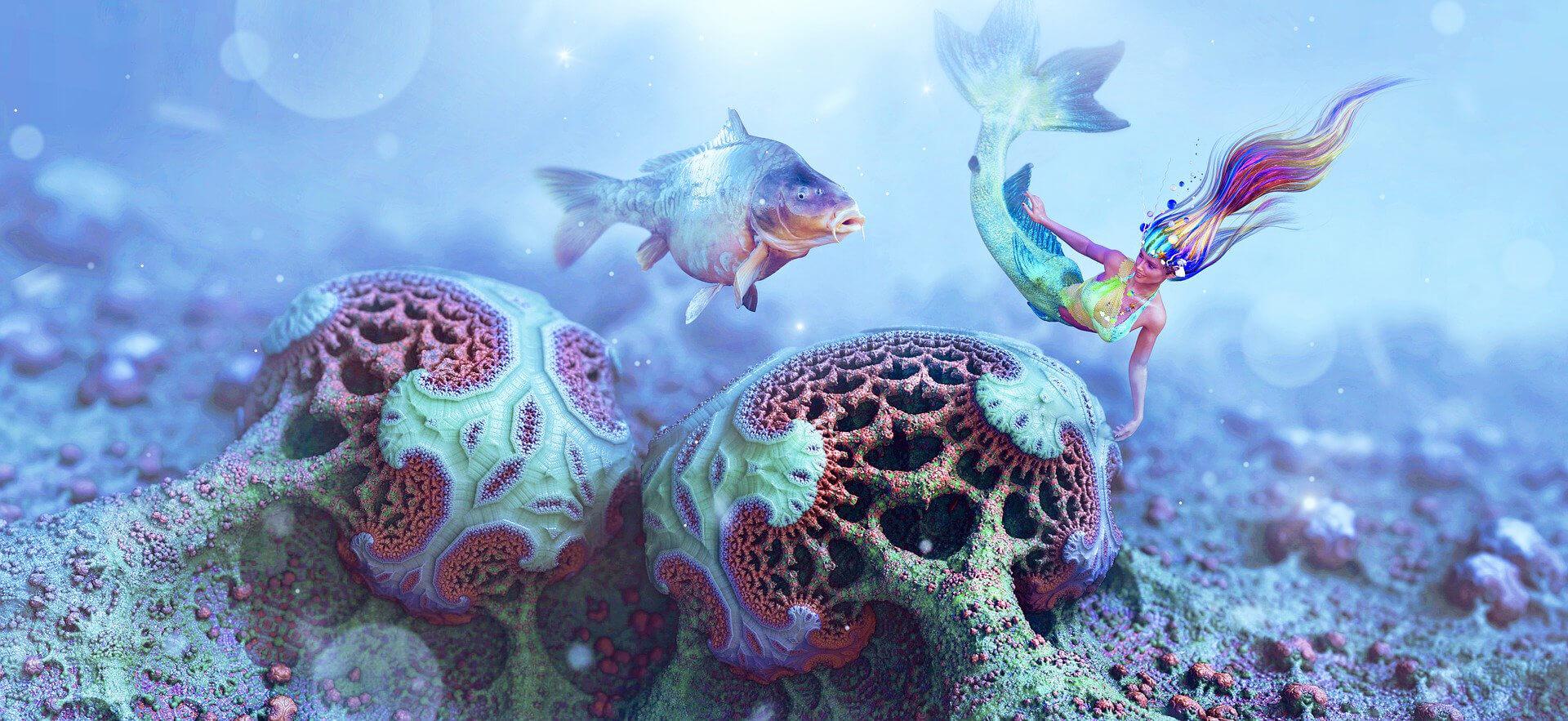 Bücher über Meerjungfrauen